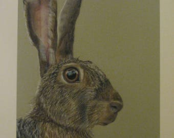 Hare 'Ellwood' Original pastel painting