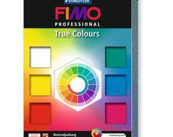 Clay Fimo Professional Kit 6 rolls + 8003.01 - polymer clay color chart