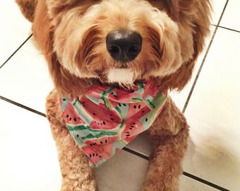 Refresh: Summer Watermelon Bandana