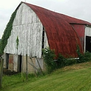 SuppliesfromtheShed
