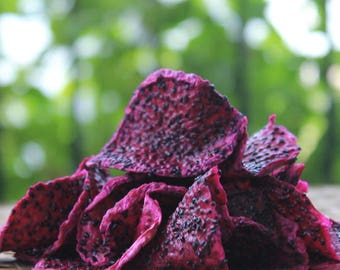 Dried Red Dragon Fruit 100gr