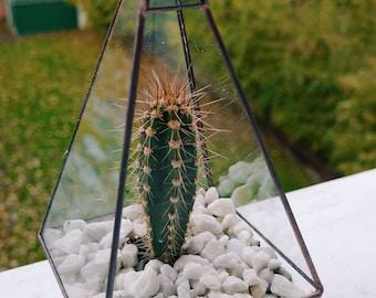 Pyramid Copper Terrarium & Cactus
