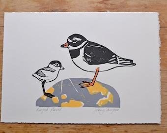 Ringed Plover and Chick - Original Seashore Lino Print