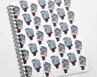 Exclusive A5 100 page African grey Parrots notebook