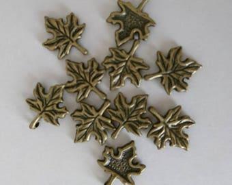 Maple Leaf Charm charm