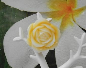 the yellow sun flower