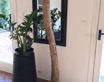 Decorative Driftwood