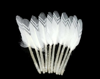 White and silver Indian feathers