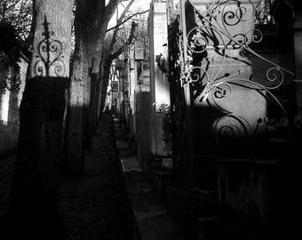 Photo print art abstract - Vegetation - Paris father Lachaise shadow