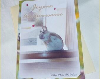 """Carte double d'anniversaire réalisée à partir de photos """" Petit campagnol """" 10,5x15cm"""
