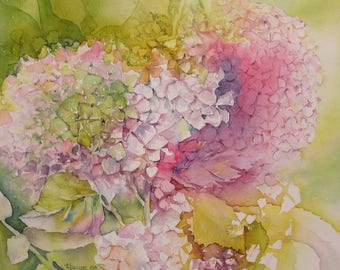 Hydrangea - Figurative watercolor