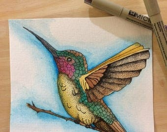Watercolor Humming Bird