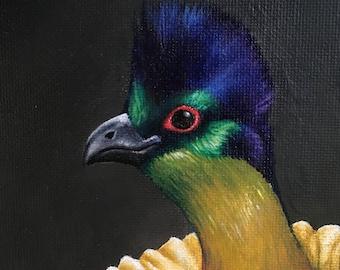 Priscilla- 8x10 acrylic bird portrait