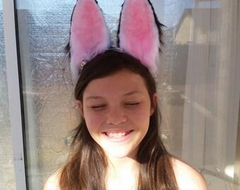 large bunny ears