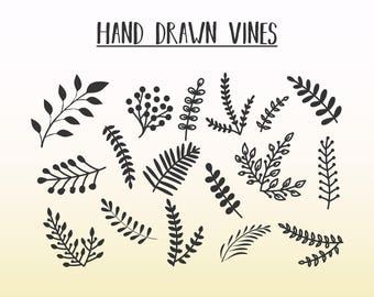 Hand Drawn Vines | Vines SVG DXF | Vines Vector Eps | Png Branches Vines Ornament Clipart |4