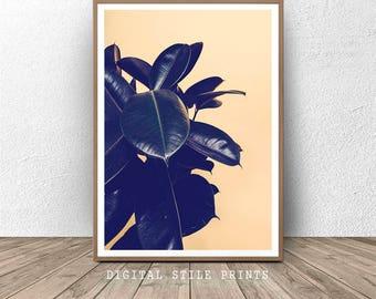 Rubber Plant Print, Plants Poster , Nature Wall Art, Large Leaf Art, Botanical Wall Art, Minimalist Art, Tropical Print, Leaves Art