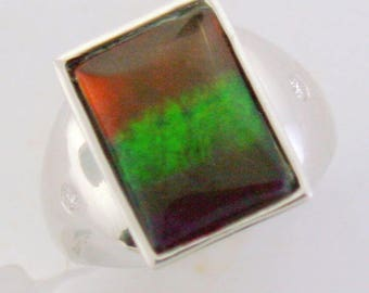 Large Bar AAA Canadian Ammolite 14k Ring.