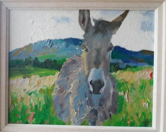 Donkey in Donegal Ireland.