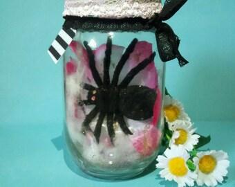 Mason Jar Dry Glitter Snow Globe Friendly Spider