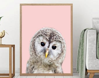 Owl Print, Nursery Wall Art Decor, Woodland Animals, Baby Shower Gift, Girl, Boy, Large Wall Art, Baby Animal Prints, Baby Owl Chick
