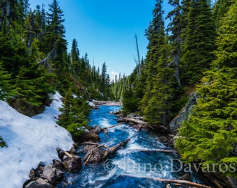 Garibaldi Rushing River
