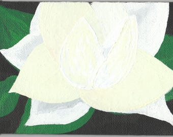 Magnolia Bloom Acrylic Painting