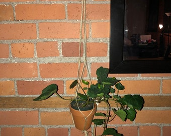 Basic twine plant hanger with terra cotta pot included