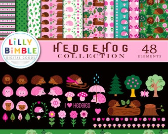 40% off HEDGEHOG COLLECTION of clipart and digital paper, cute, commercial use, clip art, woodland, scrapbook, instant download