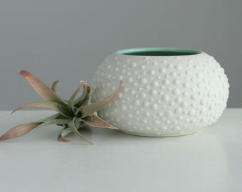 MOVING SALE Ceramic Vase Urchin White Mint Green, Sweet Pea in Mint Green Small