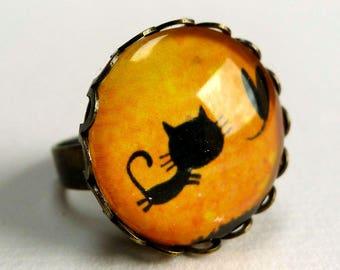 Ring, the mischievous BA101 Lucien