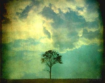 50% OFF SALE Green Surrel Abstract Art Photography Tree Spring Clouds Dark Ethereal Home Decor Teal Blue 8x8 inch Fine Art Photograph, Premo