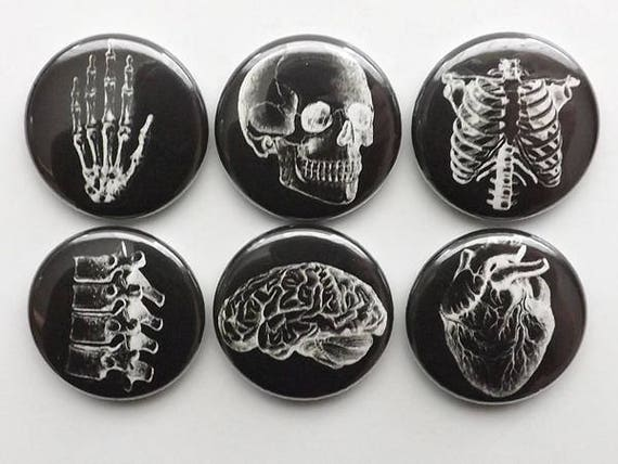 Doctor Graduation Gift Anatomy Magnet white black med student physician assistant male nurse party favor stocking stuffer paramedic goth