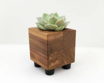 Wood Cacti Planter Pot, Small Cubist Planter, Office Planter Pot, Wedding Favor Succulent Planter