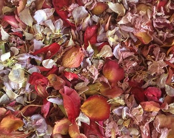 Dried Petal Confetti for Wedding Toss, Send Off, Flower Girl, Decor, Biodegradable - Pink, Purple, Crimson, Red, Peach, Coral - 12 Cups Pack