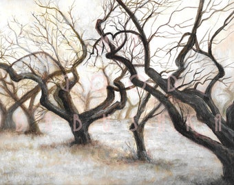 The Pale Orchard, Original Painting, Trees, Landscape, Foggy, Frosty, Bare Branches, Winter