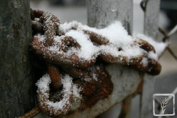 """Snowy Chain,"" Huntington Harbor, Huntington, New York, 2015"