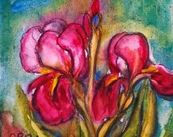 Iris, 8 x 8  PRINT