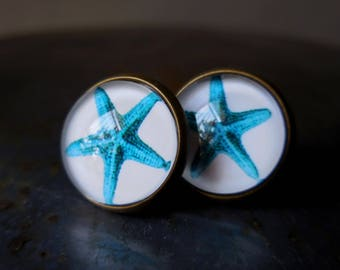 Starfish stud earrings, pacific blue studs, ocean inspired blue starfish earring vintage style bronze glass brass antique round post earring