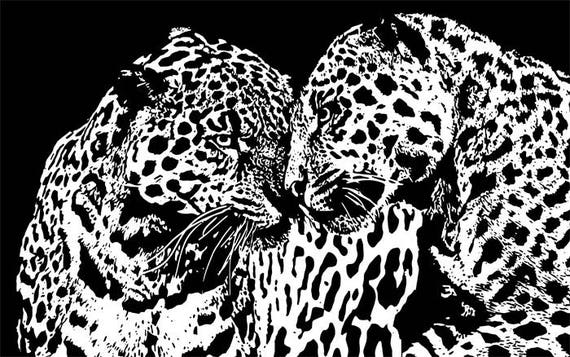 """male female leopards cats printable abstract wall art Digital Image Download animal graphics black & white 10.4"""" x 16.6"""" living room bedroom"""