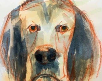 Whimsical dog art, pastel drawing / watercolor painting, contemporary pet portrait, animal art, Texas artist