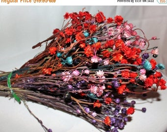 Save25% Ammobium flowers Assorted colors in a large bundle-Pink-Red-Purple-Aqua-Dried floral