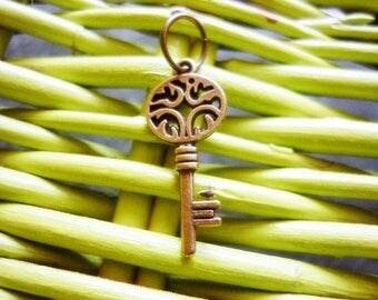 Celtic style bronze Key Pendant