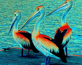 Pelican Art, Fauvism Abstract Realism, Ocean Seaside, Red-Orange Blue Black,Wall Hanging, Birds Waterfowl, Home Decor, Giclee Print, 12 x 12