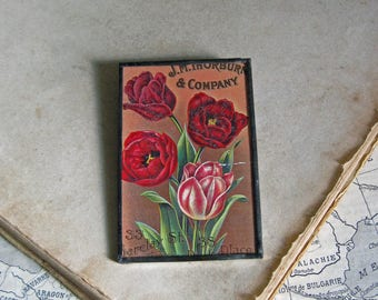 Tulip Flower Antique Seed Catalog Pin Glitter Glass Jewelry
