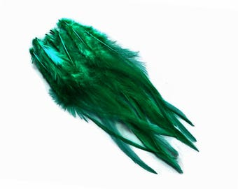 Green Rooster Feathers, 1 Dozen - Medium Solid Peacock Green Rooster Hair Extension Feathers : 790