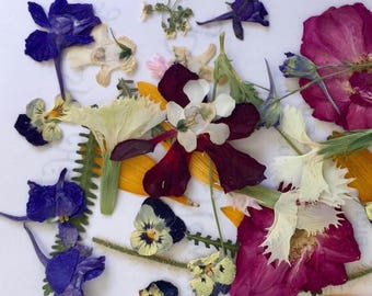 Pressed Flowers, Dried Flowers, Assorted Real Flowers, Table Decor, Biodegradable, Craft supplies, Decoupage, Invitation, Embellishments, 25
