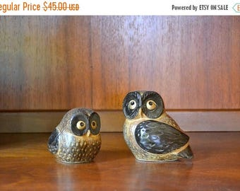 SALE 25% OFF vintage ceramic owls / boho home decor / 1970s home decor / woodland owl figurines