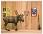 Funny Canadian moose art print: Cabin Fever