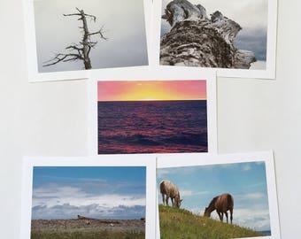 Photography Greeting Card Bundle ~ Nature Macro Sunset Landscape Horses Flowers Blank Card Canada China