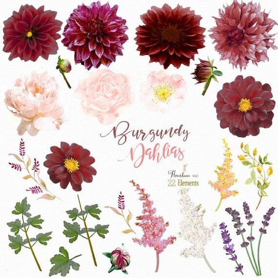 Burgundy Dahlia Clipartburgundy Clipartdahlia Flower Clipart Boho Watercolor Wedding Invitation From